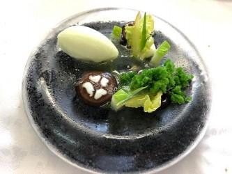 Buttermilch-Salzzitronen Sorbet - Buttermilch-Salzzitronen Sorbet, mit schwarzen Nüssen und Petersilien Granité.